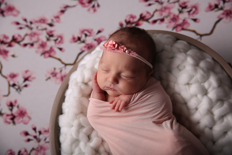 Ballan newborn photographer ballarat bacchus marsh photography studio modern baby photo
