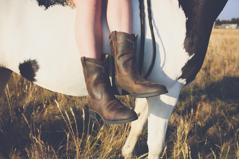 western style photography horse photographer country bacchus marsh ballarat
